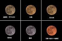 Moon_wb