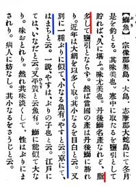 Buri_hamachi_yasu