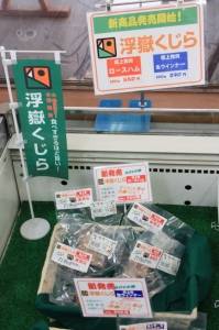 Ukidake_kujira01